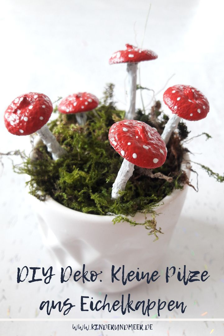 DIY Deko-Pilze aus Eichelkappen
