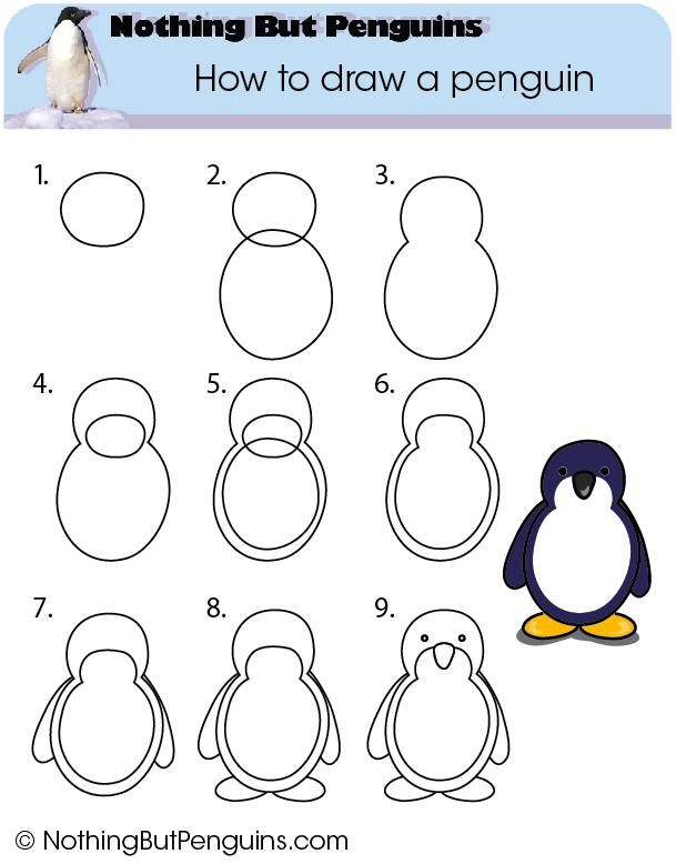 Penguin Drawings For Kids How to draw a p...