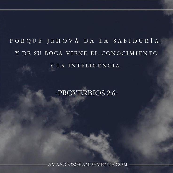 """CAMINANDO EN SABIDURÍA-  Semana 1 / Martes Lectura - Proverbios 2:1-6 Devocional - Proverbios 2:6  """"Porque Jehová da la sabiduria y de su boca viene el conocimiento y la inteligencia"""" Proverbios 2:6   #Caminandoensabiduría #AmaaDiosGrandemente #Mujersabia #Proverbios #Devocionalparamujeres #Estudiobiblicoenlinea #ADGenespañol #Dios"""