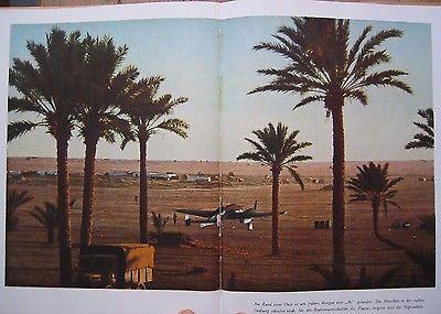 Original 1943 Afrika Korps Color Photo Book Luftwaffe Rommel DAK tropical WW2 • $89.00