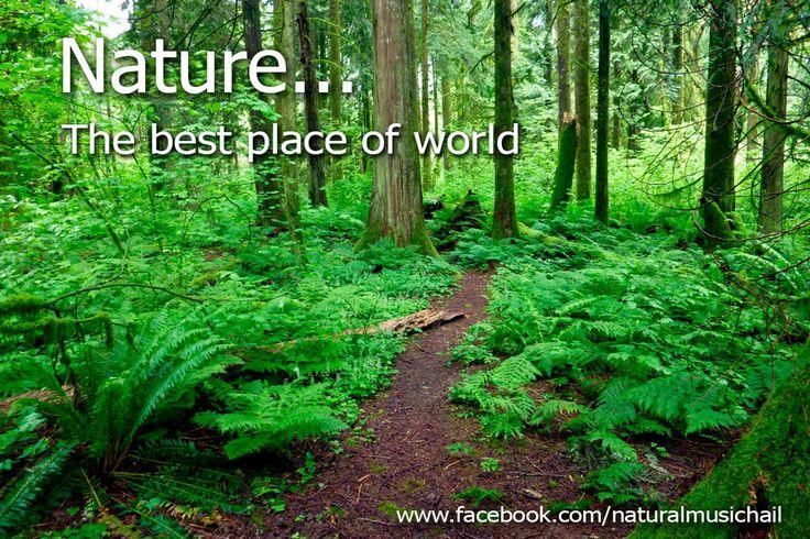 Nature, the best place of world by valkyrieofasgard.deviantart.com on @DeviantArt