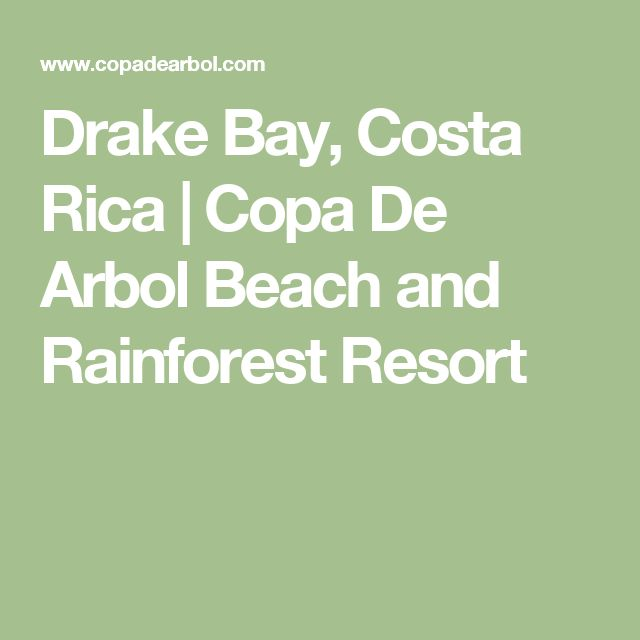 Drake Bay, Costa Rica | Copa De Arbol Beach and Rainforest Resort