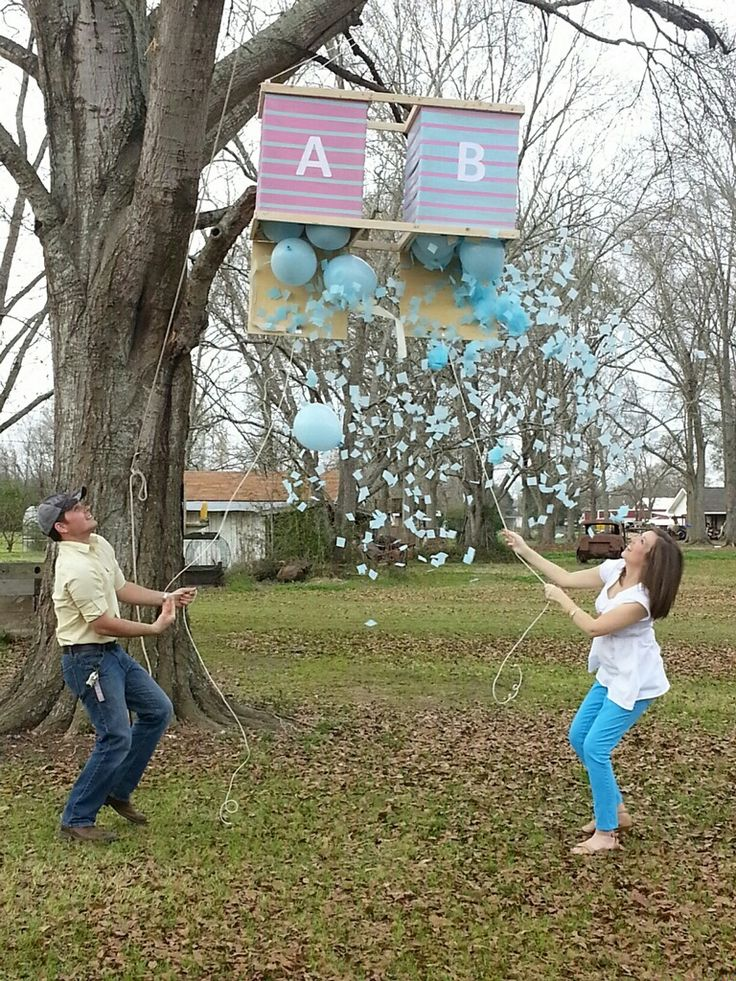 Twin Gender Reveal Party