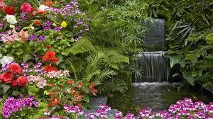 Resultado de imagen para flores y mariposas