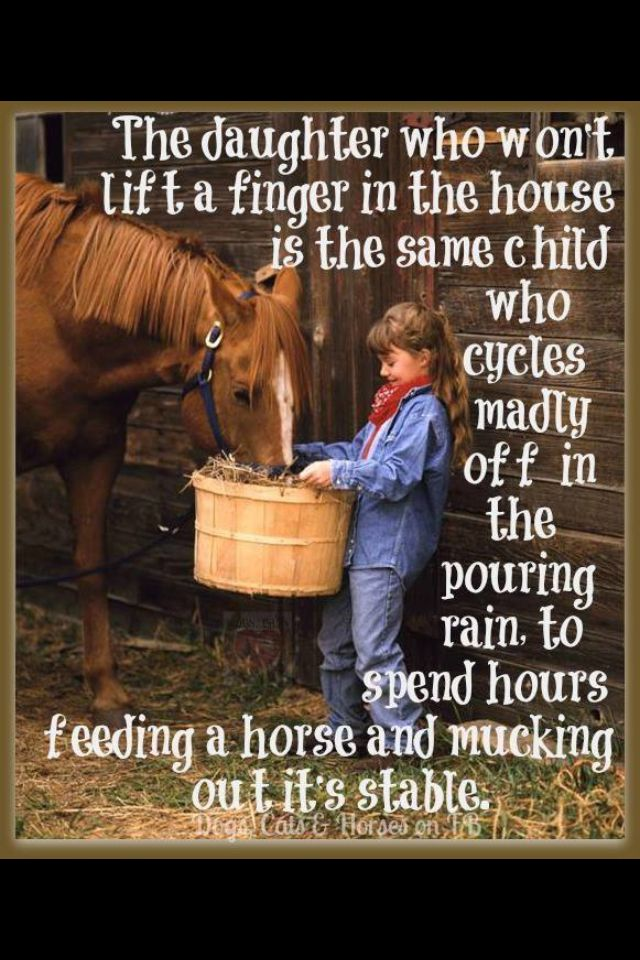 If we lived closer to the barn I have no doubt...
