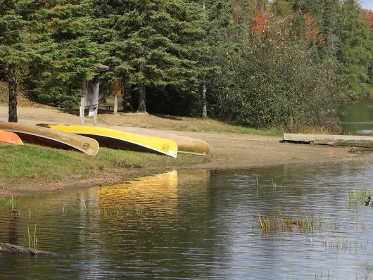 Visit #Algonquin #Park near #Kearney #Ontario http://www.sandlake.on.ca Text 416.419.3415 for #accommodations north of #Muskoka in the #Almaguin #Highlands We are located near #Huntsville and #Novar