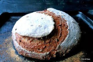 Pan di Pane: Pane Integrale con grano germogliato e Pasta Madre.