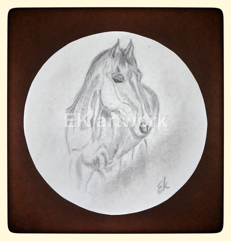 """"""" Let a horse whisper in your ear, and breathe on your heart. You will never regret it!"""" Quote. EK artwork"""