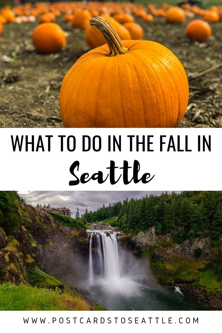 The Best Things To Do In Seattle In The Fall In 2020 Seattle Travel Washington Travel Washington Things To Do