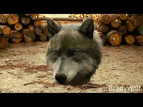 """CGI VFX Breakdown HD: """"The Twilight Saga Wolves Vfx Breakdown"""" by Tippett Studio - YouTube"""
