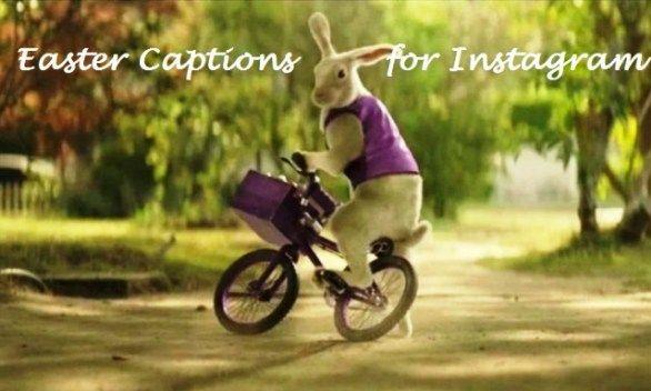Best Easter Captions For Instagram Funny Easter Memes Instagram Captions Easter Humor