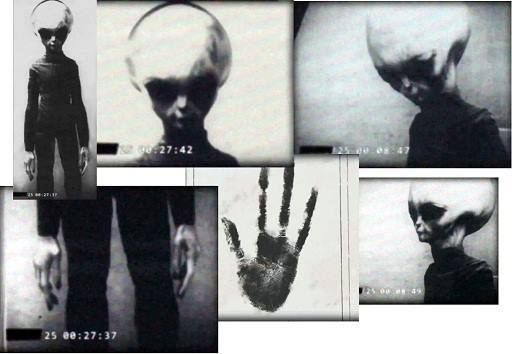 Real documented alien? #TheASGproject