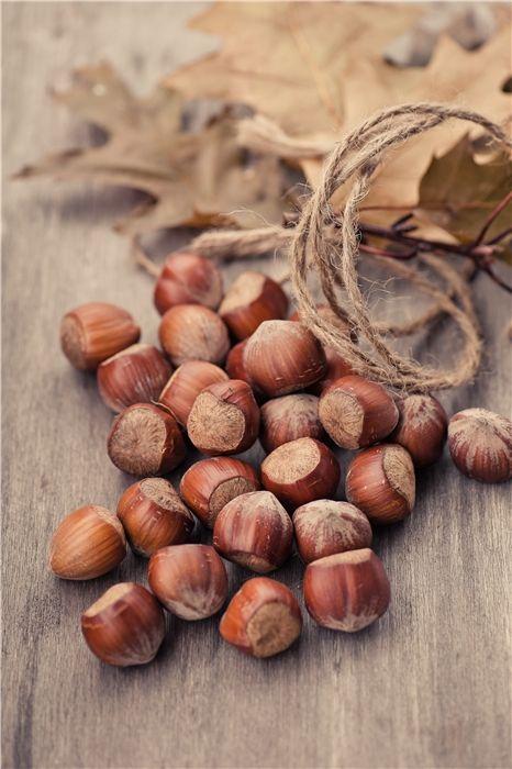 The Fruit Of The Mighty Oak ~ Photo by...Яблочки с орешками©