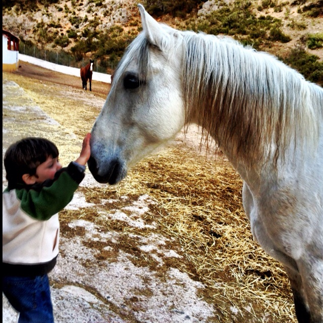 El chiquitín y comisario, #razonesparavenir conoce la #sierradelsegura en #bogarra