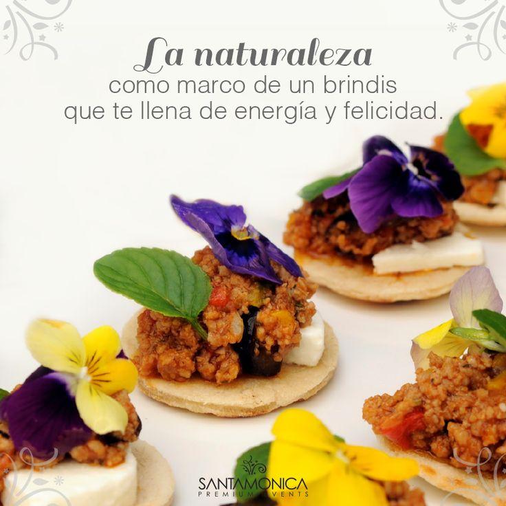 En SANTAMÓNICA podrás disfrutar de platos de talla internacional