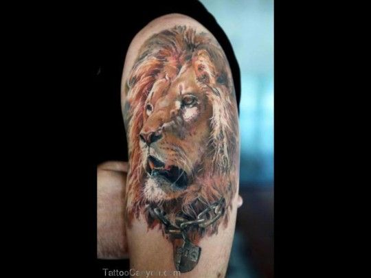 10 best images about Lion Tribal Tattoos on Pinterest ...