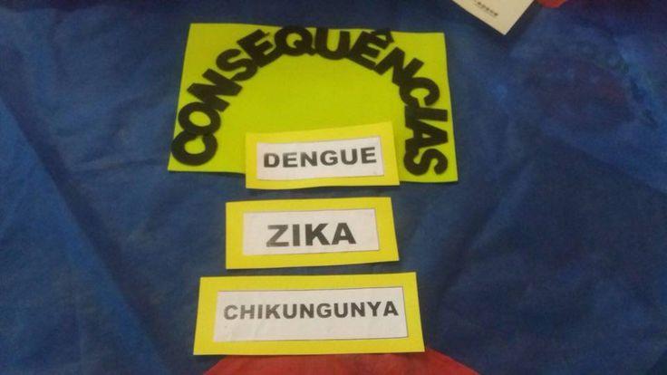 Ensinando com Carinho: Tarjetas com informações sobre preservação do mosquito da dengue