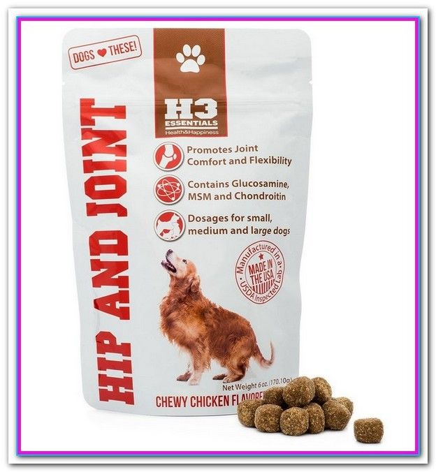 Best Dog Food For Older Dogs With Joint Problems Dog Joint