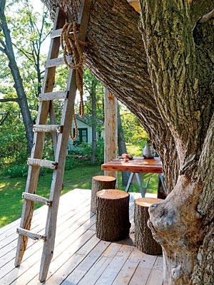The owner made the stump stools from trees that fell on the property after a tornado; the table is by Steven Teichelman.