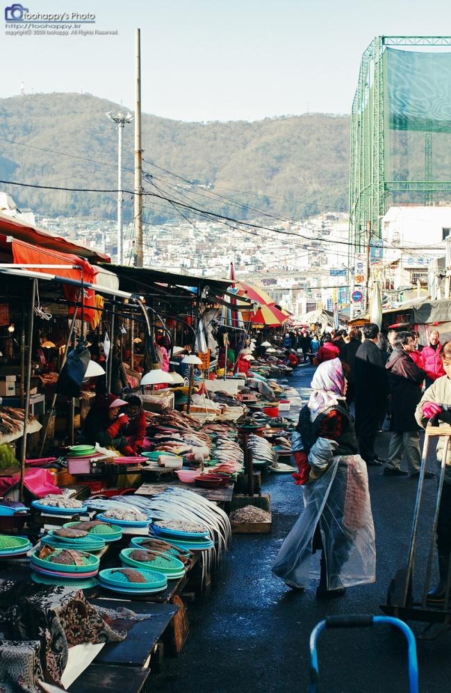 25 best ideas about busan on pinterest korea south for City fish market
