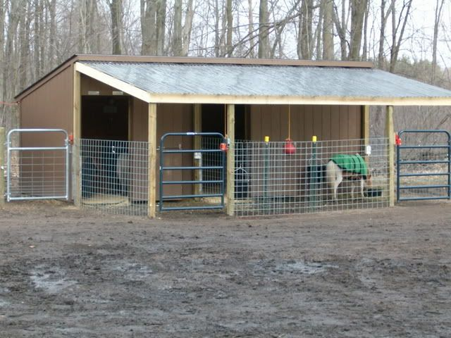 Covered Horse Shelters : Nice small lean to horse barn shelter farmer girl