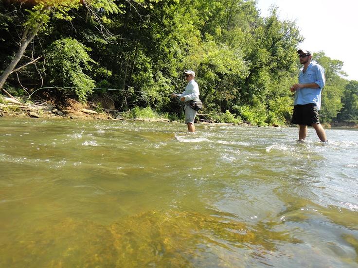Fishing the elkhorn creek in kentucky fly fishing for Fly fishing kentucky