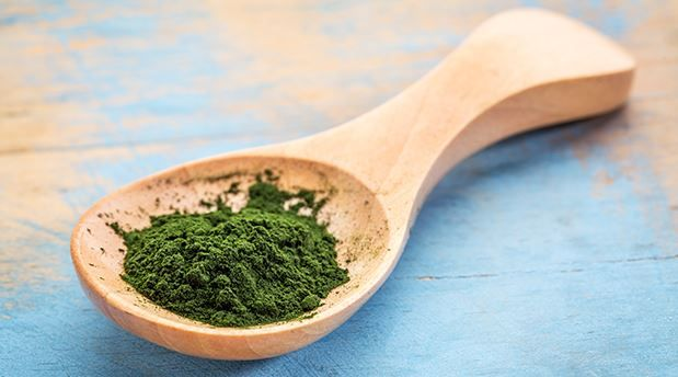 The Detoxifying Health Benefits of Chlorella - RiseEarth