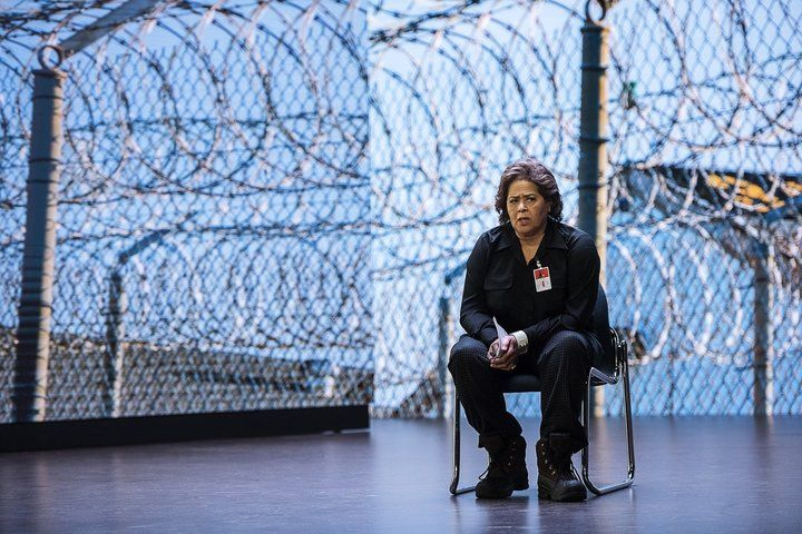 Anna Deavere Smith, Notes from the Field