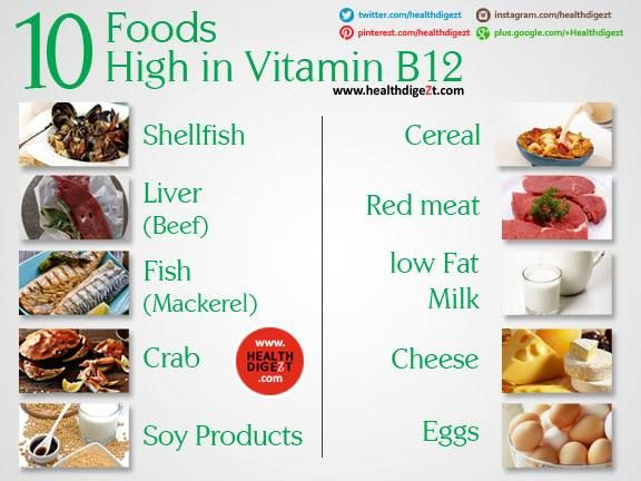 Foods High In Vit B
