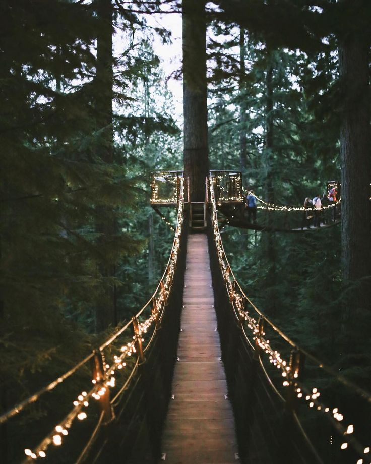 The holidays are a magical time and we teamed up with @holidayinn  @roadtrippers to show you the magical treetop adventures  and the prettiest lights  at @capilanosuspensionbridge. New blog post and our last one for 2015!  Link in profile  #heynowvancouver by localwanderer