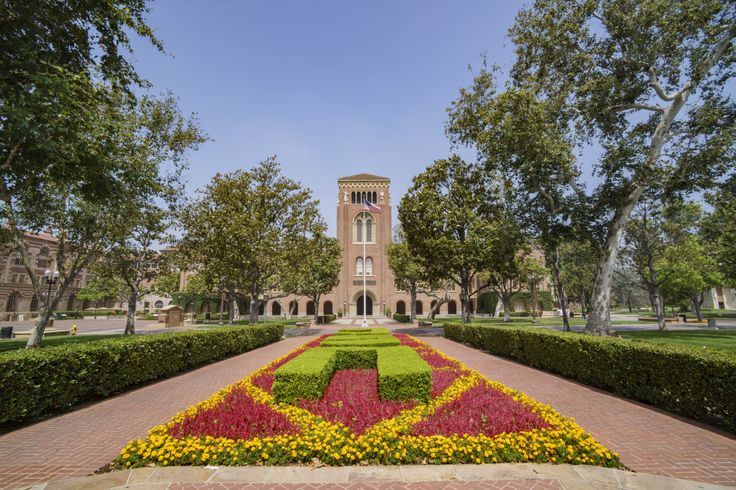 School officials say false reports of a shooting at the University of California were spawned by a faculty member telling her students during class that there was an active shooter in the building. USC Department of Public Safety chief John Thomas said Los Angeles police are questioning the... - #Active, #Faculty, #False, #Member, #News, #Panic, #Shooter, #Spawns, #USC