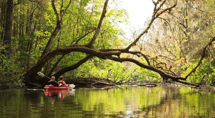 Slow water...: Slow Water Lov, Wonder Trips, Hair Awesome