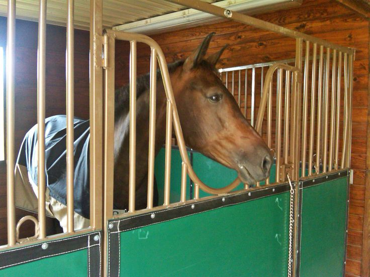 Fairgrounds and horse racetracks love our Elite Show Series. They beat traditional temporary horse stalls. These horse stalls lightweight, safe, and sturdy. They feature vinyl boards, an open-rounded yoke door, and more!