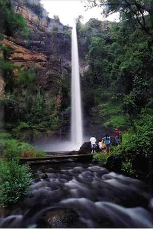 Lone Creek Falls-Sabie