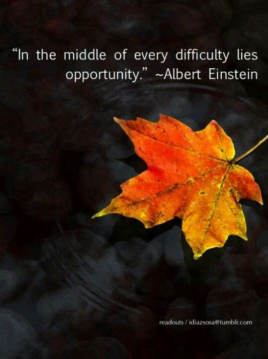 Albert Einstein ..* In the middle of every difficulty lies opportunity
