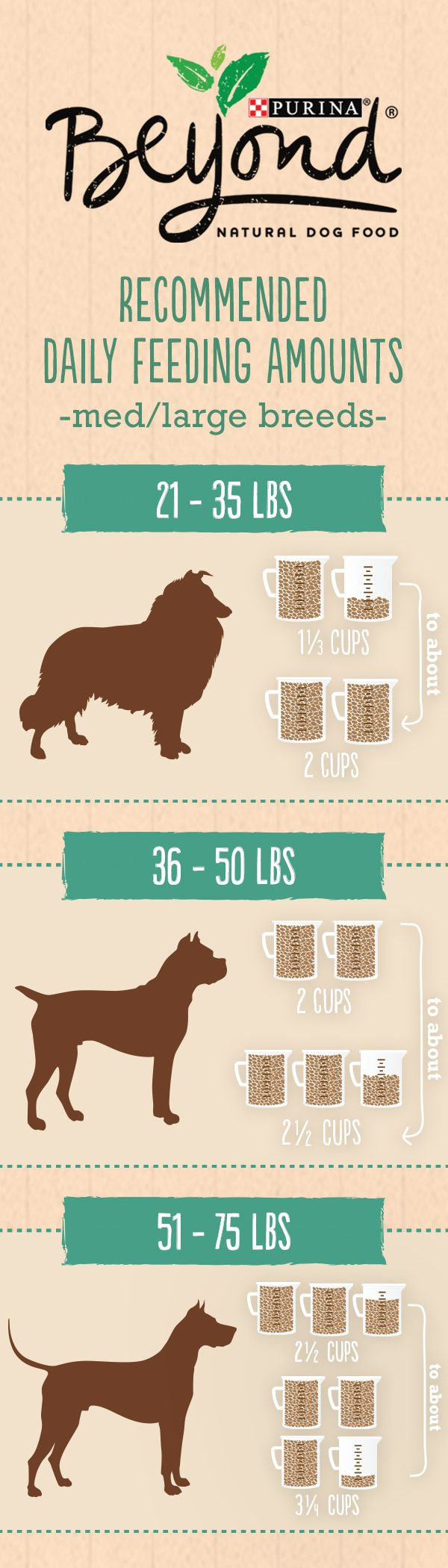 How to determine the right amount of Beyond Natural Dry Pet Food for your medium to large dog: begin with the recommended amount provided for your specific recipe. Then adjust your healthy dog food to maintain ideal body condition, depending on factors like your dog's age and activity level.