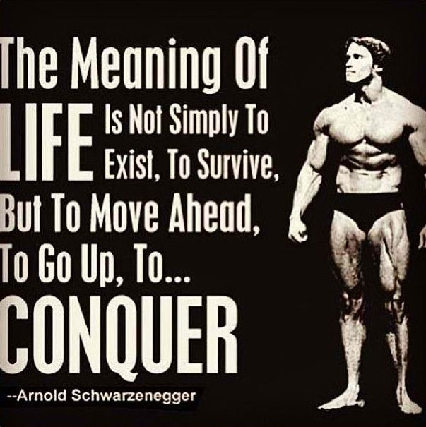 The meaning of life is not simply to exist, to survive, but to move ahead, to go up, to CONQUER: