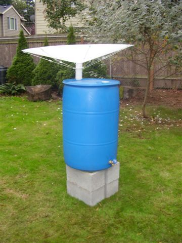 The Rainsaucer Attached To A 55 Gal Plastic Barrel With