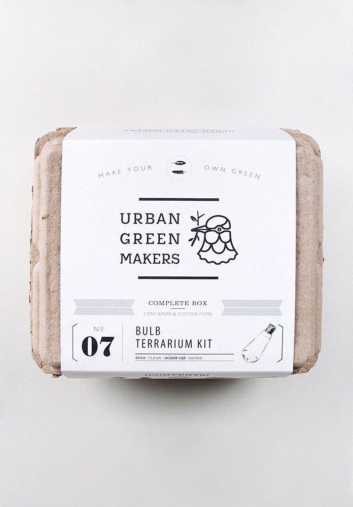 Urban Green Makers – Bulb Terrarium Kit