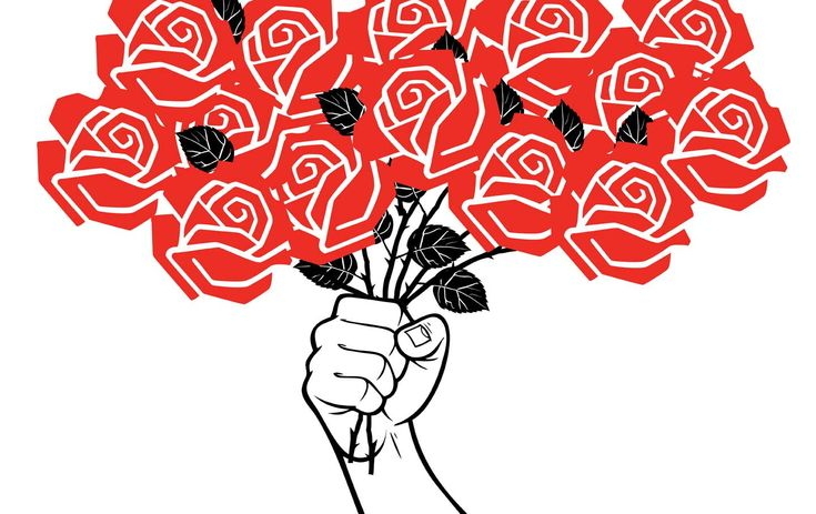 Since Trump's Victory, Democratic Socialists of America Has Become a Budding Political Force    Why an army of young people is joining DSA.