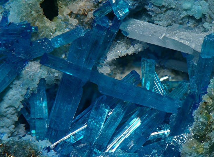 Caledonite crystals with Cerussite; King Arthur Mine, Kirki, Thrace, Greece. Fov 7 mm. Collection/Copyright: loismin