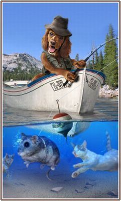 Funny fishing pictures jokes - photo#16