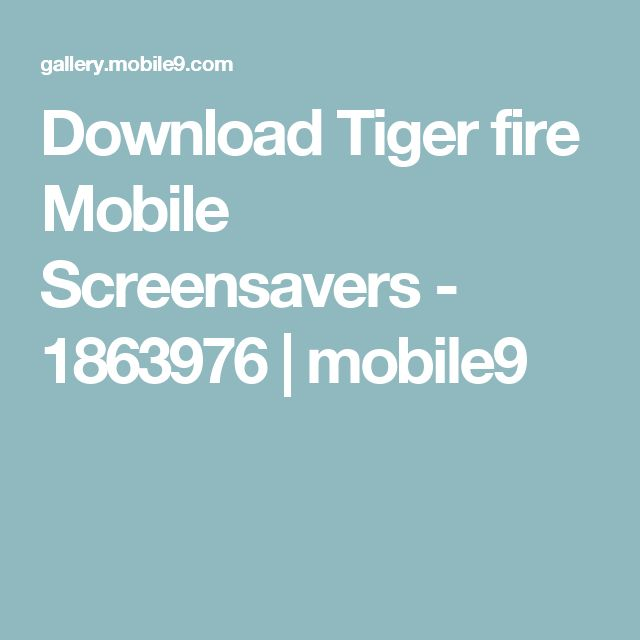Download Tiger fire Mobile Screensavers - 1863976 | mobile9