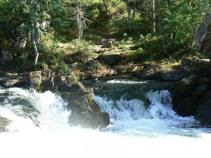 White-water in Oulanka National Park        -Oulangan Kansallispuistossa Pienellä Karhunkierroksella