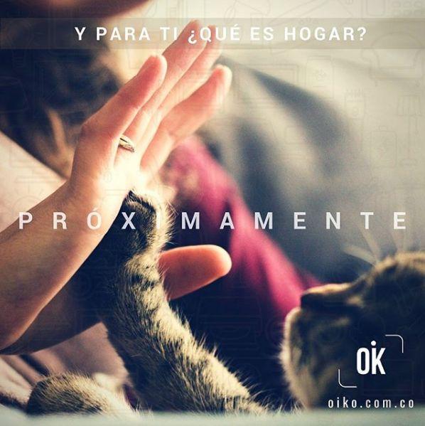 Tu hogar: OK  #comingsoonOIKO #proximamenteOIKO #Oikohome #OikoColombia  #home #pets #hogar #mascotas #happiness #comingsoon #proximamente #OK