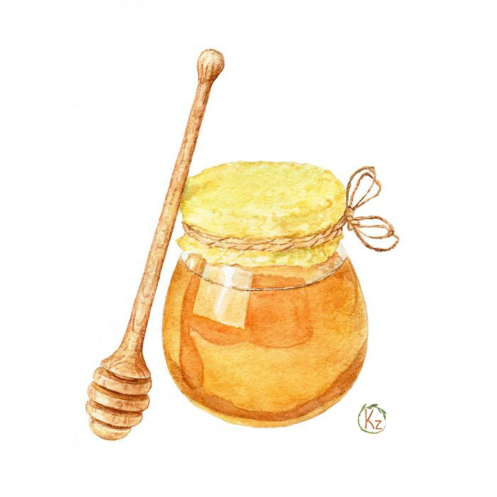 Watercolor honey set on Behance