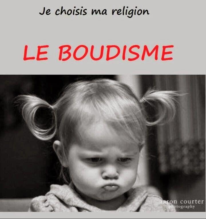 Les 'Pissenlits Généreux': HUMOUR : Je choisis ma religion ...