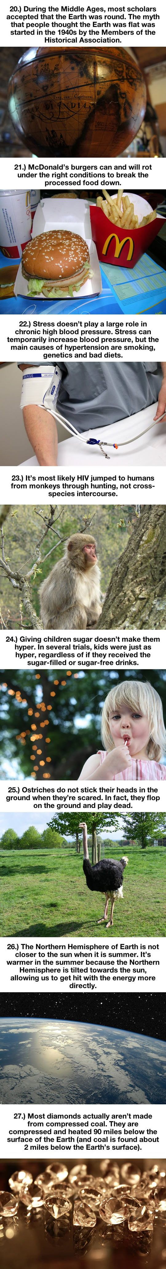 Things That Are Total Lies // funny pictures - funny photos - funny images - funny pics - funny quotes - #lol #humor #funnypictures