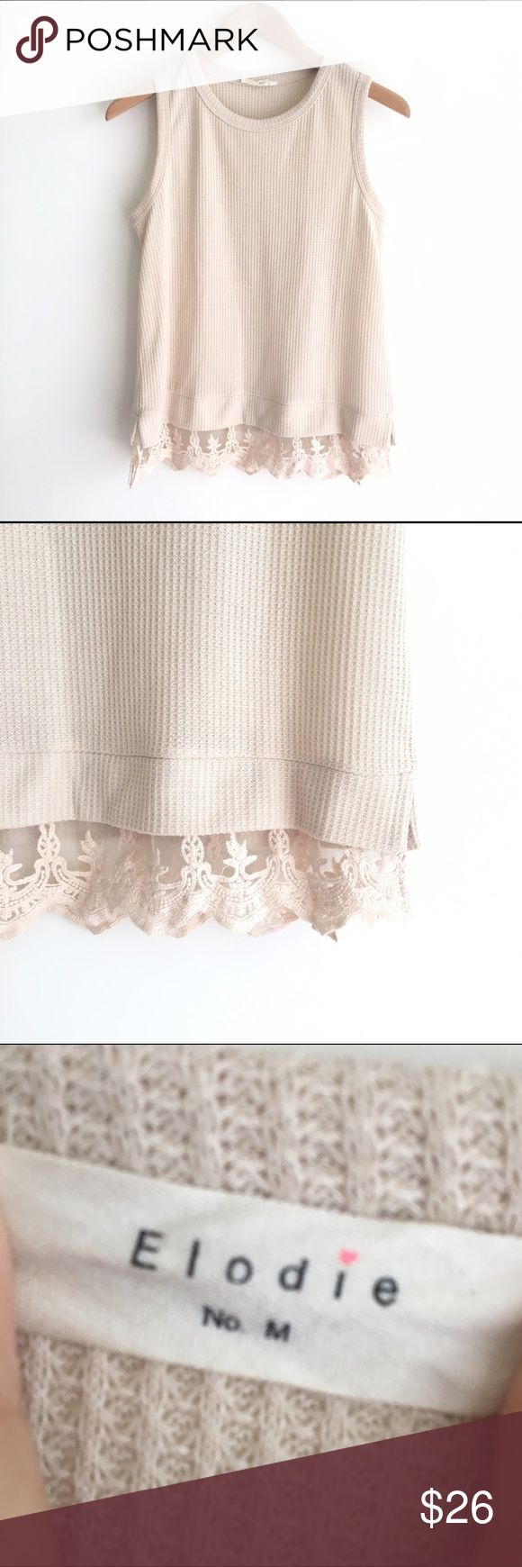 Eloide Tan Knit Sleeveless Top with Lace Hem Beige colored knitted tank with lace hemline. Excellent condition, no signs of wear or flaws. Nordstrom Tops Tank Tops