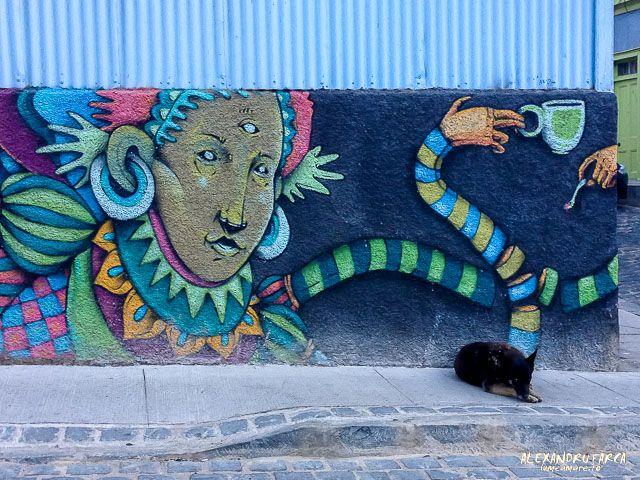Pictura şi câinele - Valparaiso, Chile